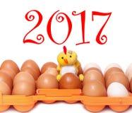 2017 kurczaka obsiadanie na jajkach w plastikowej tacy Zdjęcia Royalty Free