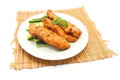 kurczaka tandoori zdjęcie royalty free
