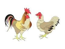 kurczaki Obrazy Stock