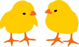 kurczaki dwa Obrazy Stock