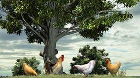 Kurczaki i kogut na natury tle Obraz Royalty Free