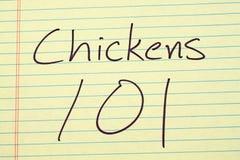 Kurczaki 101 Na Żółtym Legalnym ochraniaczu Fotografia Stock
