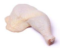 kurczaki się blisko nogi Obraz Royalty Free