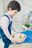 Kurczaki w rękach dziecko zdjęcie stock