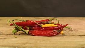 Kurczyć się i lejni chili pieprze na drewnianym tle Przegnili chili pieprze Zakończenie Fotografia Royalty Free