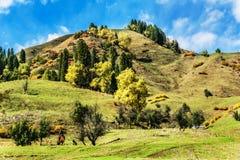 Kurdish Ning scenery in Xinjiang, China Royalty Free Stock Image