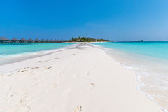Kuredu Island from the Sandbar. Royalty Free Stock Photo