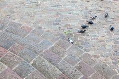 Kurenda kamienny schody zdjęcia stock