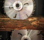 Kurenda zobaczył rżniętego drewno zdjęcie royalty free