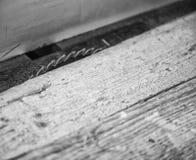 Kurenda zobaczył zamkniętego up dla rżniętego drewna fotografia stock