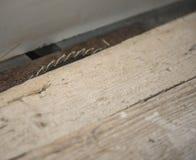 Kurenda zobaczył zamkniętego up dla rżniętego drewna  obraz stock