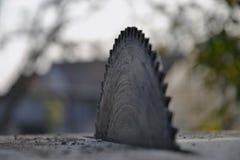 Kurenda zobaczył ostrze dla drewna w ogródzie Zdjęcie Royalty Free