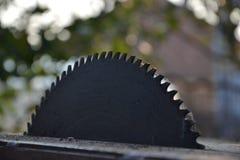 Kurenda zobaczył ostrze dla drewna w ogródzie Fotografia Stock