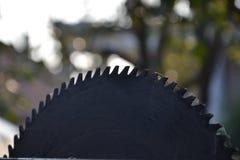 Kurenda zobaczył ostrze dla drewna w ogródzie Zdjęcia Stock