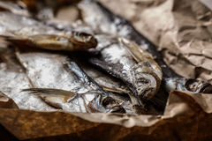 Kurierte Fische Lizenzfreies Stockbild