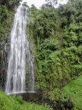 Kuringe waterfall in Tanzania Stock Image