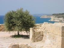 Kurion - la Cipro fotografie stock libere da diritti