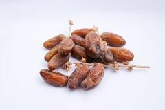 Kurma ou fruits de dates d'isolement sur le fond blanc pour Ramadhan image libre de droits