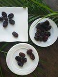 Kurma torkas g?mma i handflatan frukt, en typisk mellanm?lmat av ramadhan som ?tas i den fasta m?naden royaltyfria bilder
