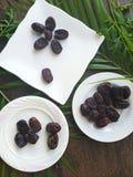 Kurma torkas g?mma i handflatan frukt, en typisk mellanm?lmat av ramadhan som ?tas i den fasta m?naden fotografering för bildbyråer