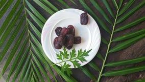 Kurma torkas g?mma i handflatan frukt, en typisk mellanm?lmat av ramadhan som ?tas i den fasta m?naden royaltyfri foto
