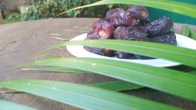Kurma torkas g?mma i handflatan frukt, en typisk mellanm?lmat av ramadhan som ?tas i den fasta m?naden arkivfoto