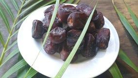Kurma torkas g?mma i handflatan frukt, en typisk mellanm?lmat av ramadhan som ?tas i den fasta m?naden arkivfoton