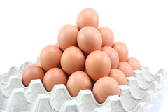 Kurni jajka w papierowym panelu na białym tle Fotografia Royalty Free