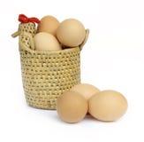 kurni koszykowi jajka Zdjęcia Stock