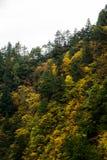 Kurobe峡谷,富山,日本 图库摄影