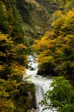 Kurobe峡谷,富山,日本 免版税库存图片