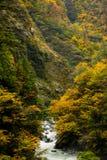 Kurobe wąwóz, Toyama, Japonia Zdjęcie Stock