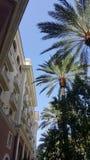 Kurortu budynek podczas dnia z drzewkami palmowymi Fotografia Stock