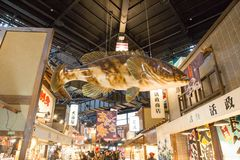 Kuroshio fiskmarknad, Wakayama, Kansai, Japan royaltyfri fotografi