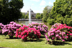 Kurpark en Wiesbaden Imagen de archivo libre de regalías