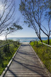 Kurrawa Beach Royalty Free Stock Images
