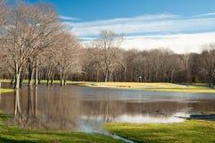 kurs översvämmad golf arkivbilder