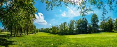 Kurs av en golfbana i Tyskland, med rader av träd på båda sidor av gräsplanen, landskap royaltyfri bild