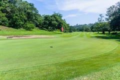 Kurs för skarp kurva för golfhålgräsplan scenisk royaltyfri bild