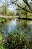 Kurs för UK-livsmiljöflod Fotografering för Bildbyråer