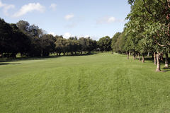 kurs golfa Zdjęcia Stock