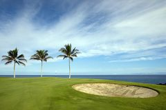 kursgolf hawaii Royaltyfri Bild