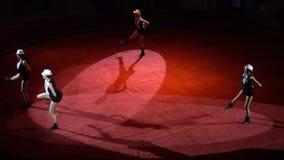 KURSK - JUNI 6: cirkuskapacitet, dansa av flickor stock video