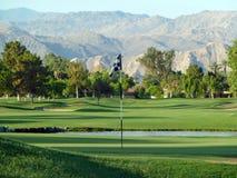kursowe golfowe palmowe wiosna Zdjęcia Stock