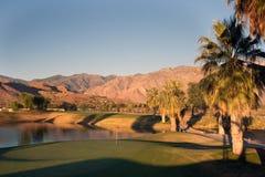 kursowe golfowe palmowe wiosna zdjęcie royalty free