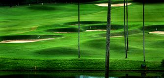 kursowy golf Obrazy Royalty Free