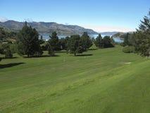 kursowy golfowy nowy Zealand Fotografia Royalty Free