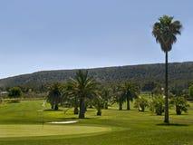 kursowy golfowy tropikalny Zdjęcia Royalty Free