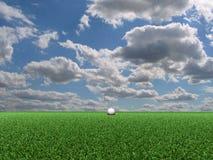 kursowy golfowy widok Obraz Stock