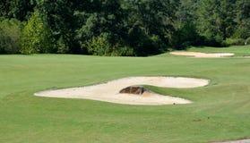 kursowy golfowy zagrożenie Zdjęcie Stock